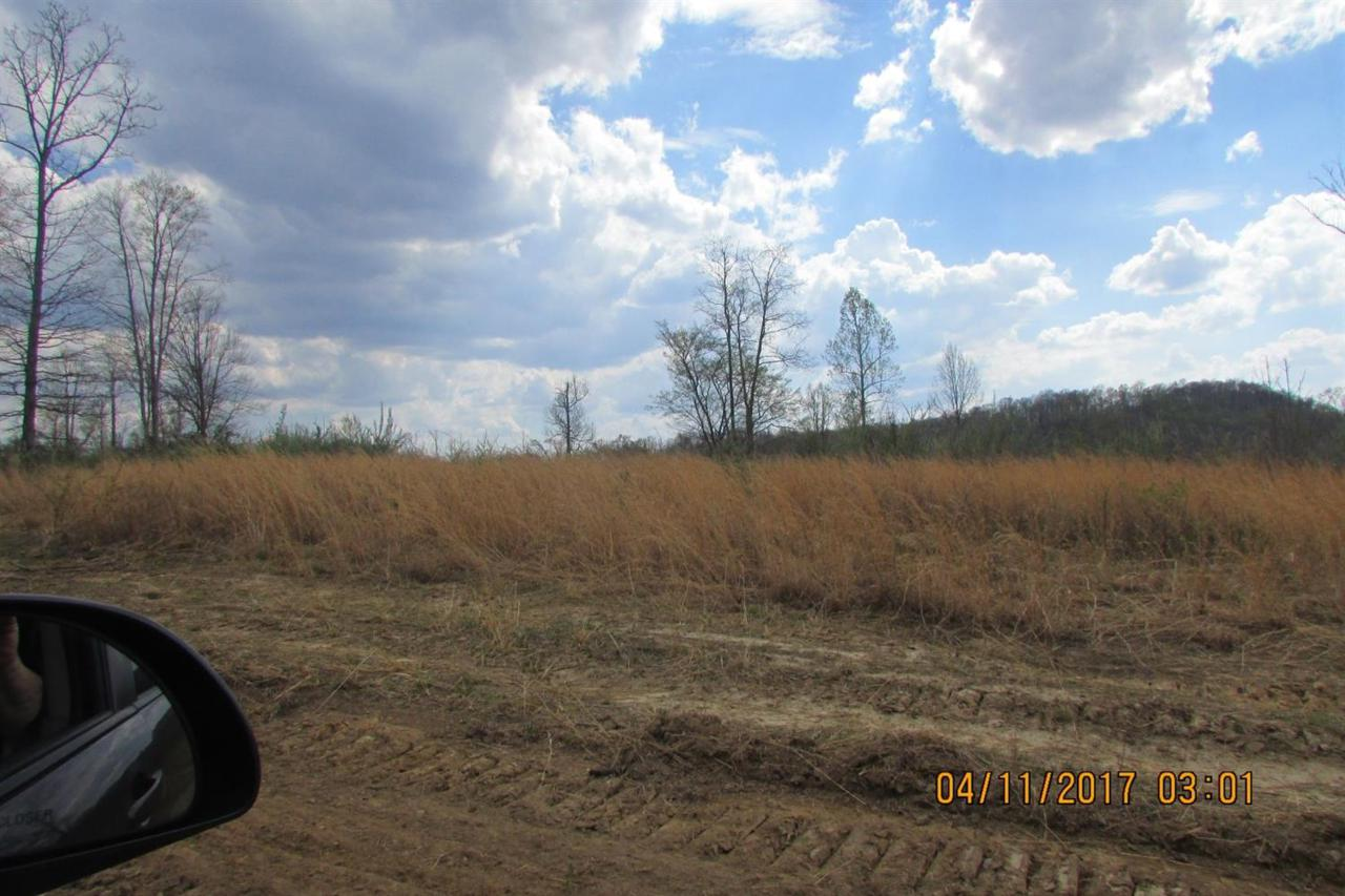 100 Old Stinking Creek Road - Photo 1