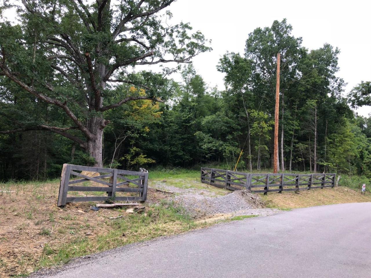 1668 Davis-Turkeyfoot Road - Photo 1