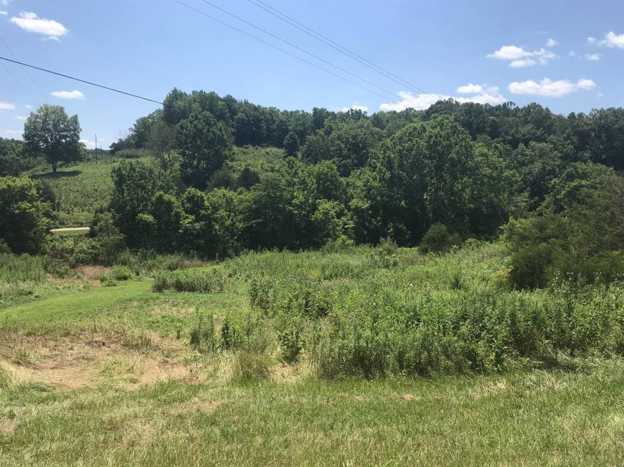 260 Flag Fork (Tract 1) Road - Photo 1