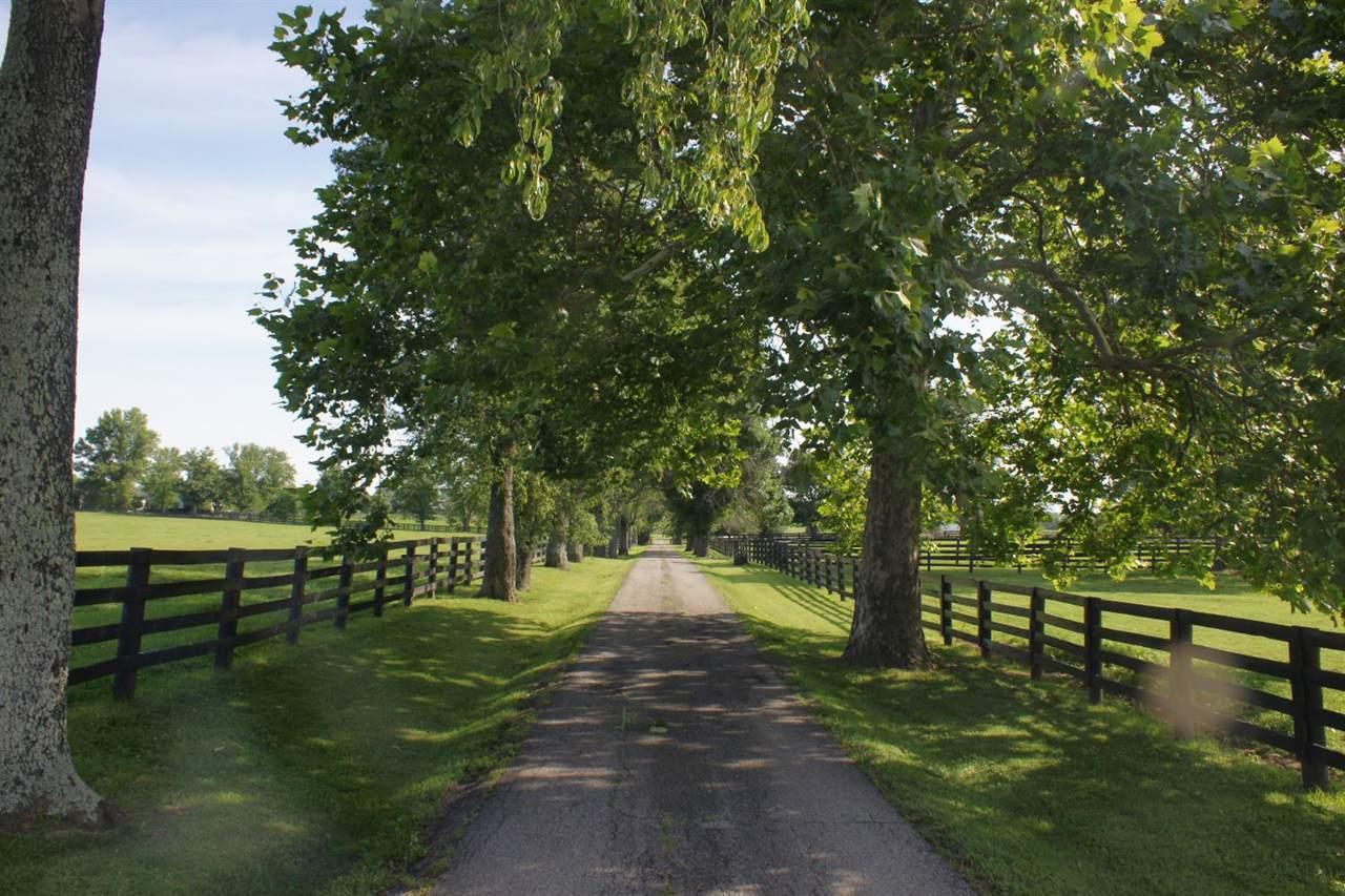 187 Harp Innis Road - Photo 1