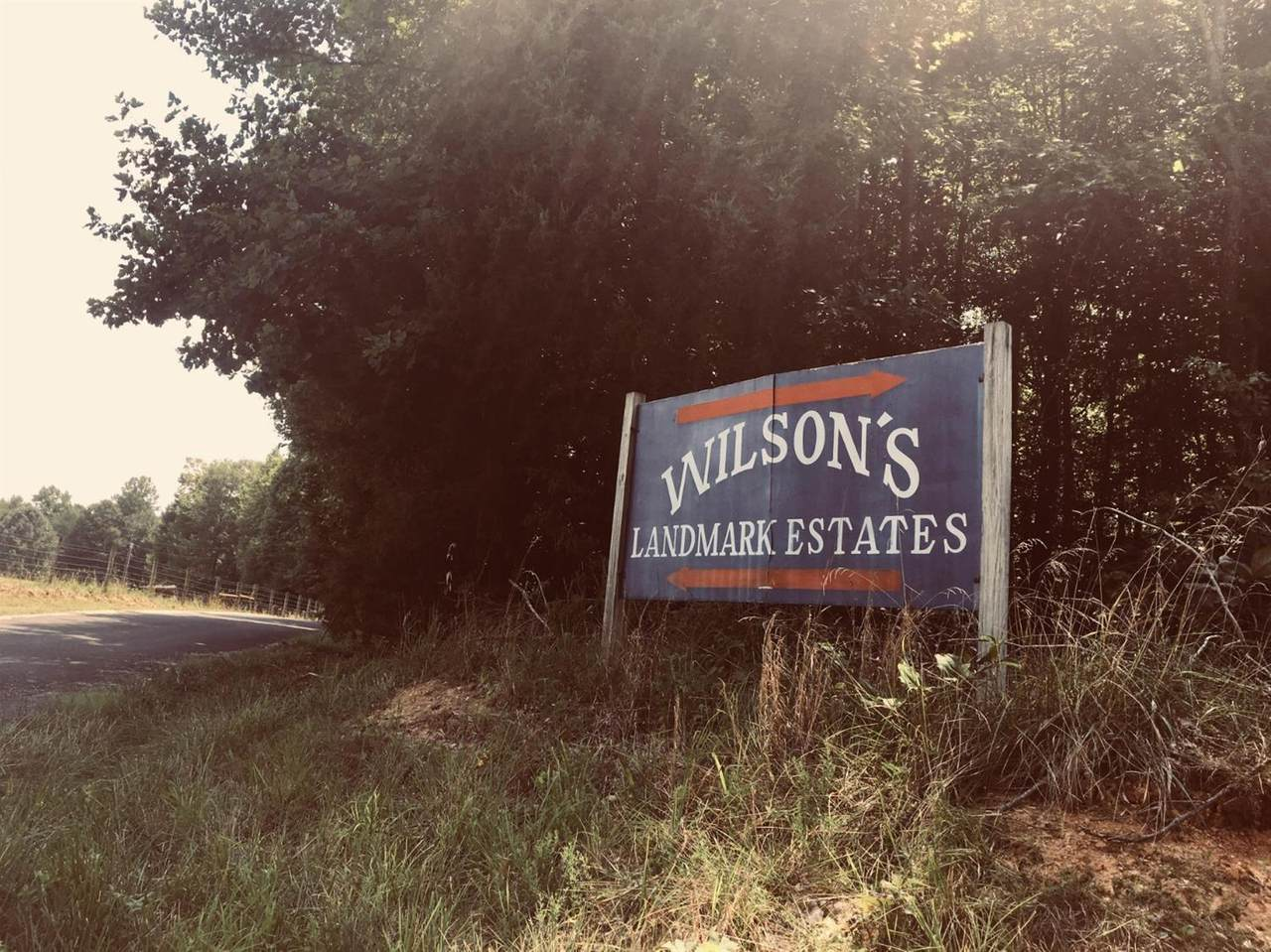 21 C&E Wilson Trail - Photo 1