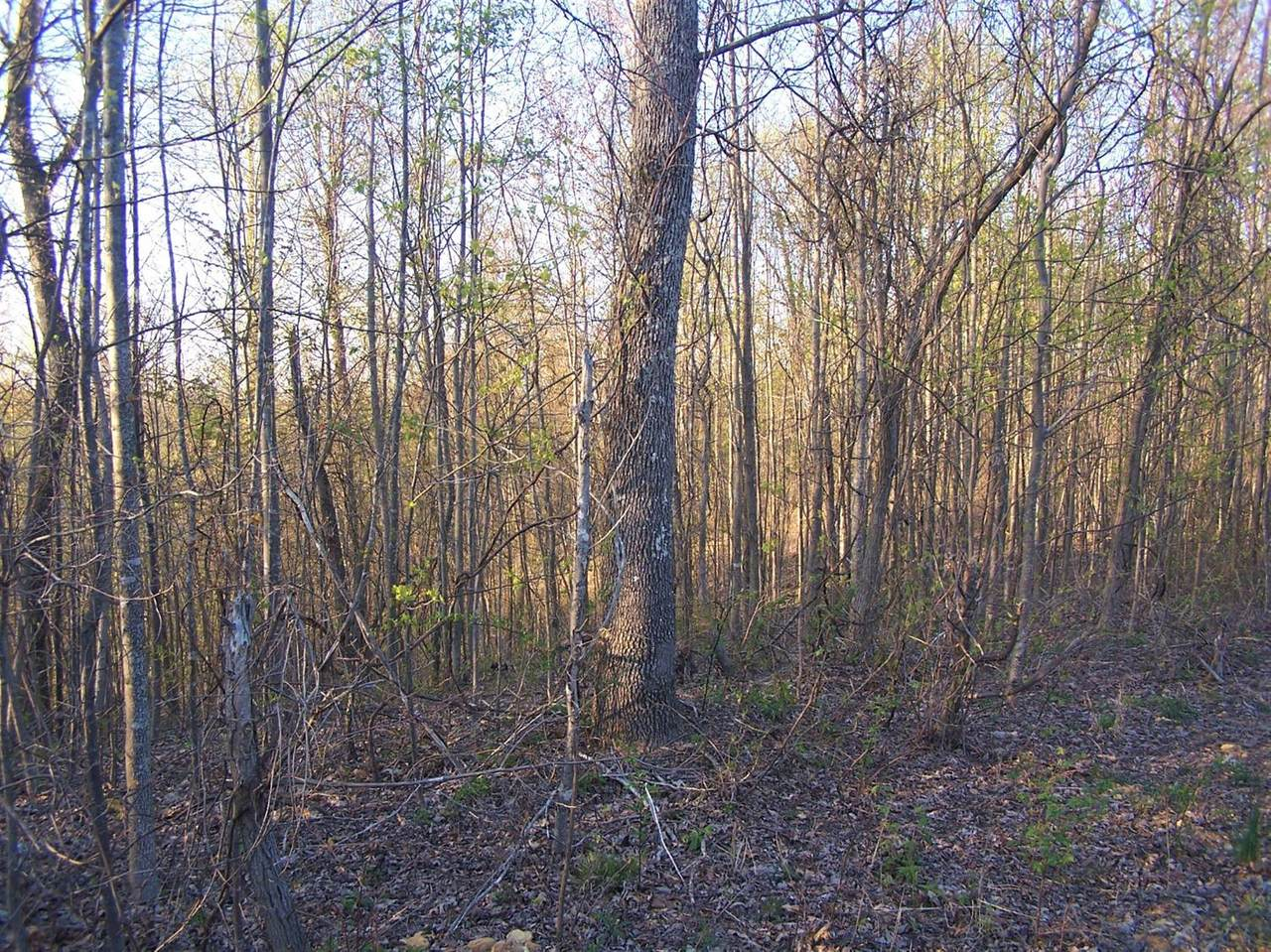 476 Sinking Valley Road - Photo 1