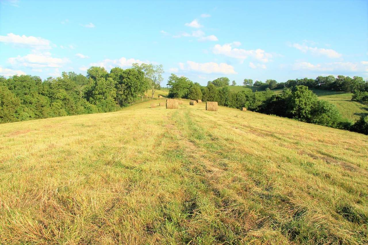 1 Maysville Road - Photo 1