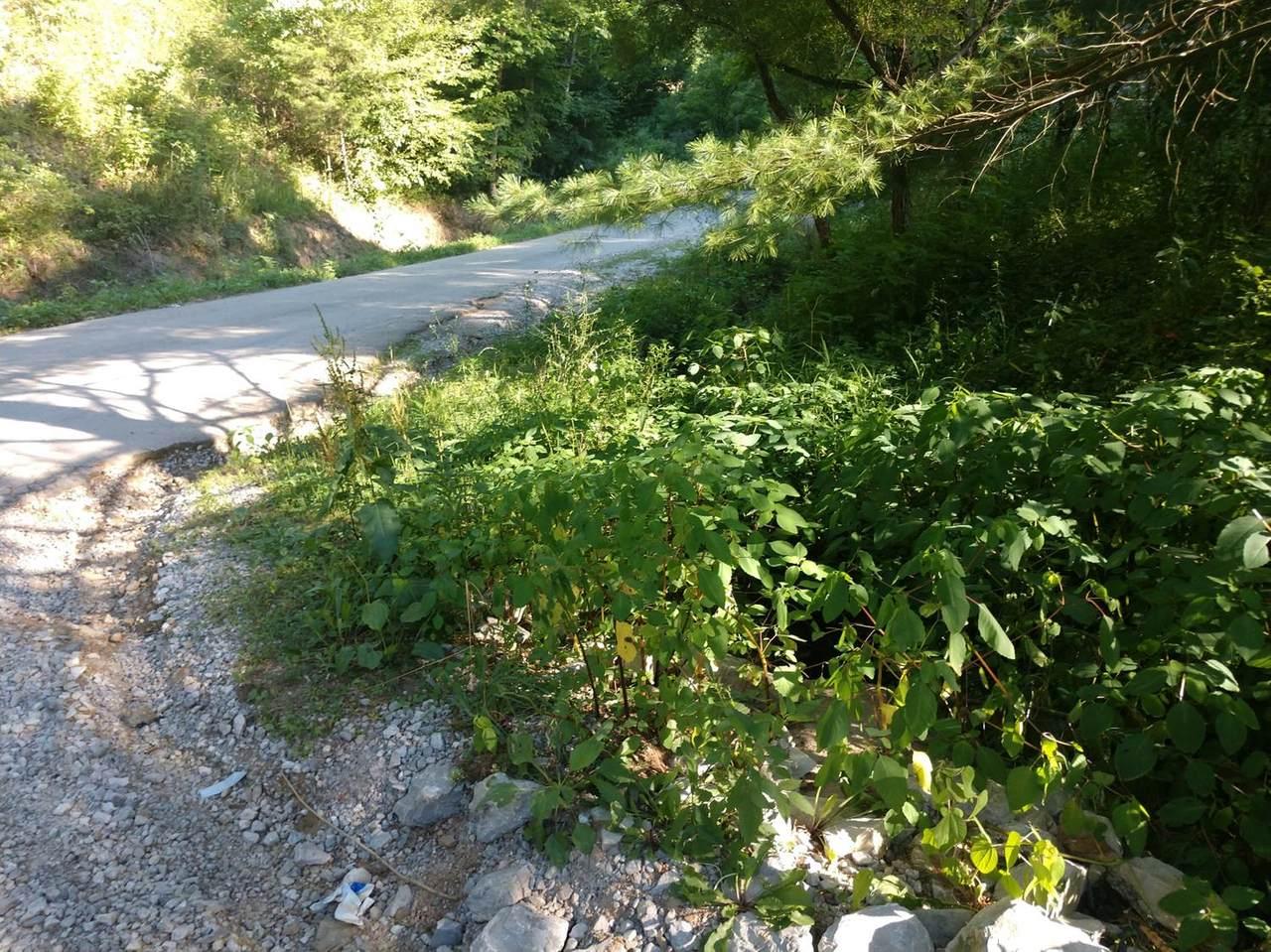 767 Ponder Branch Road - Photo 1