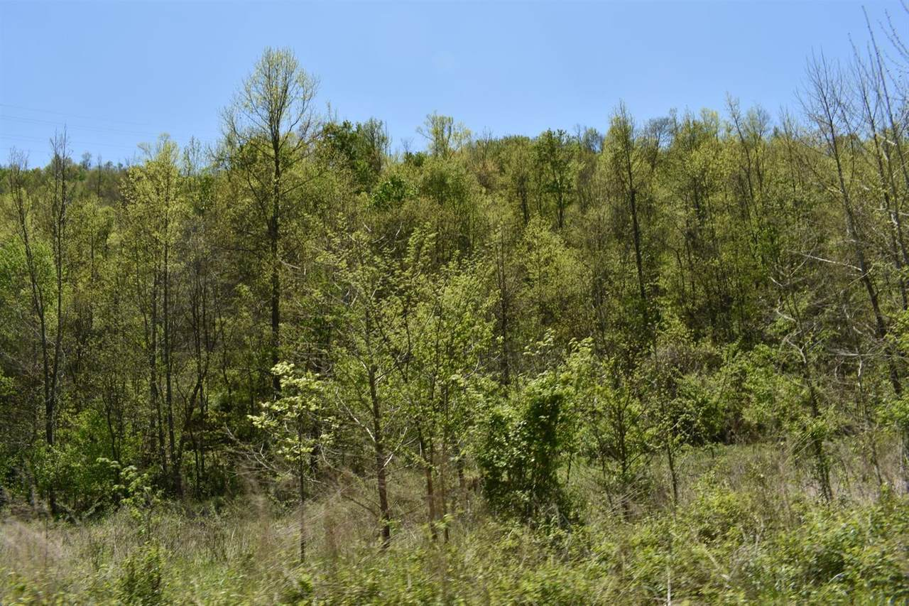 1 Owens Branch - Photo 1