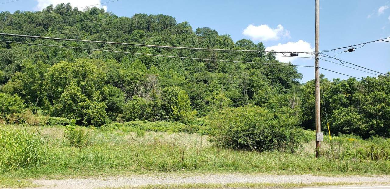 4511 Ky Hwy 476 - Photo 1