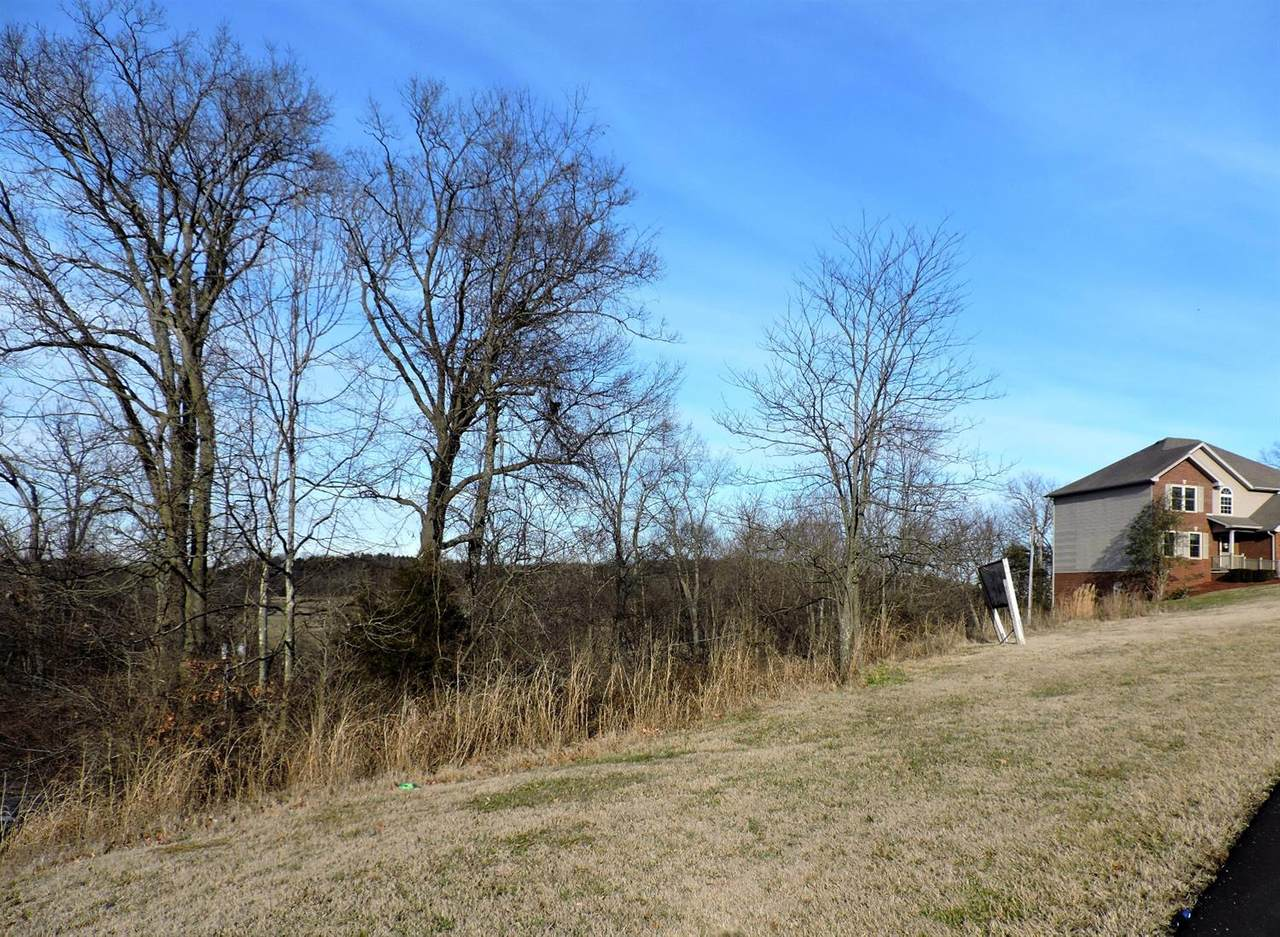 877 Ridgeview Drive - Photo 1