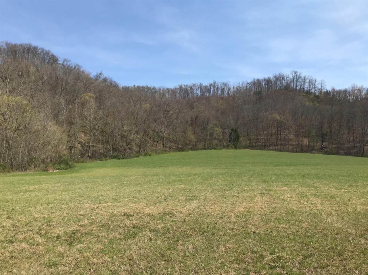 0-Land Brushy Creek Road - Photo 1