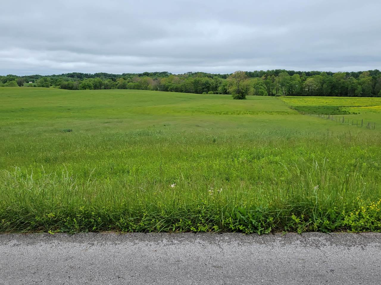 355 Rough Creek Road - Photo 1