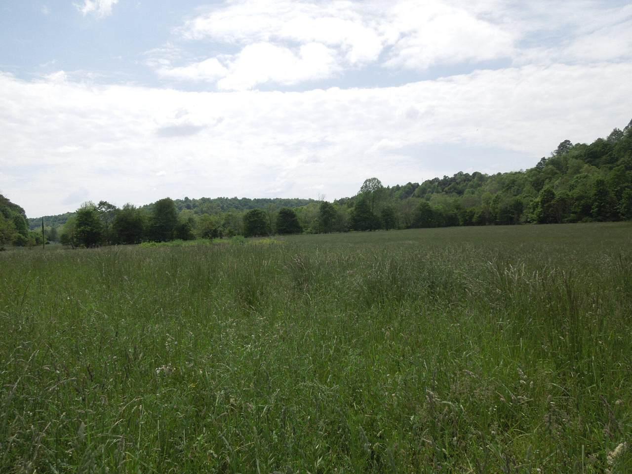 1 Upper Brush Creek Road - Photo 1