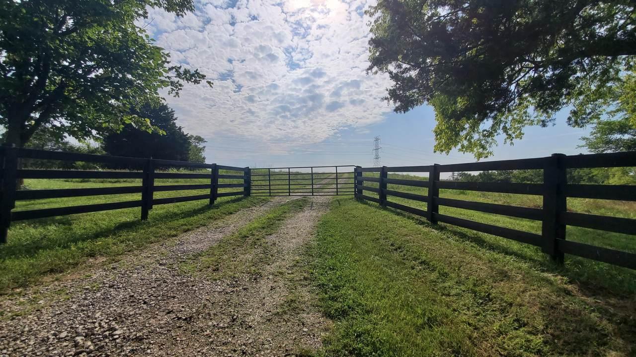 175 Walnut Flat Creek Road - Photo 1