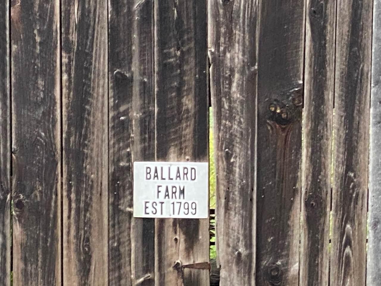 4479 Muddy Creek Road - Photo 1