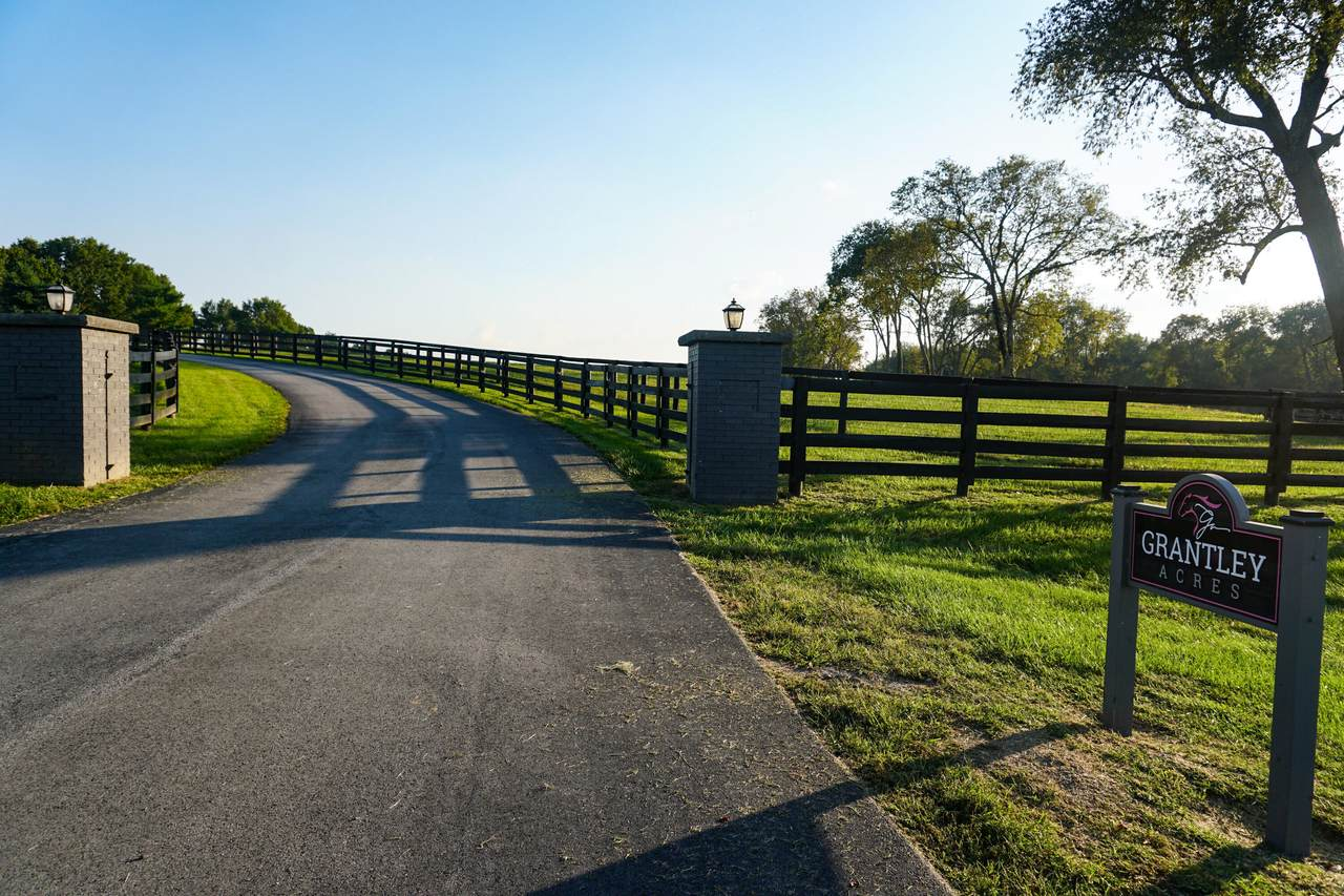 3945 Leestown Road - Photo 1