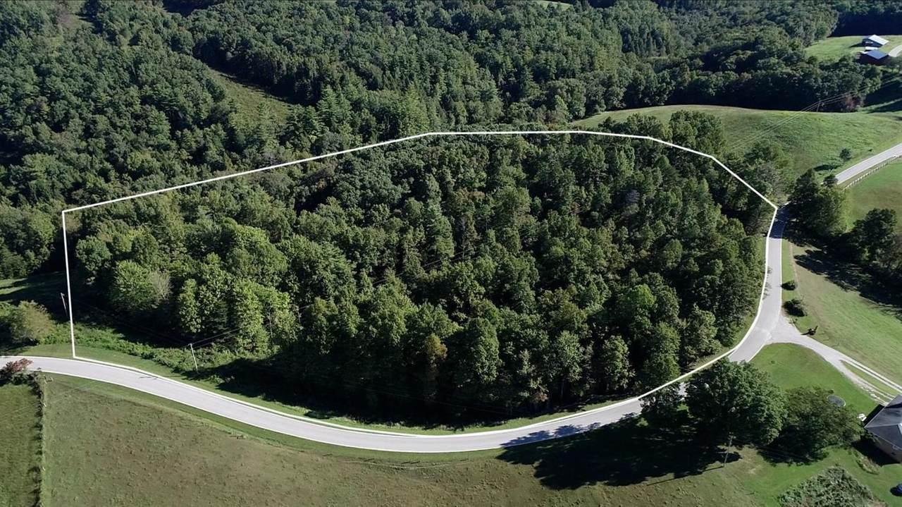 2472 Highway 1950-Prater Ridge - Photo 1