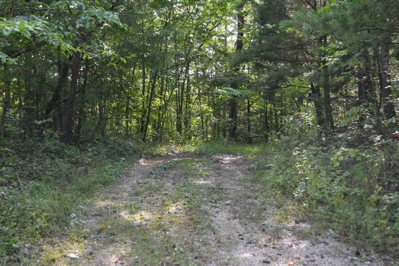 9999 Dog Branch School Road - Photo 1