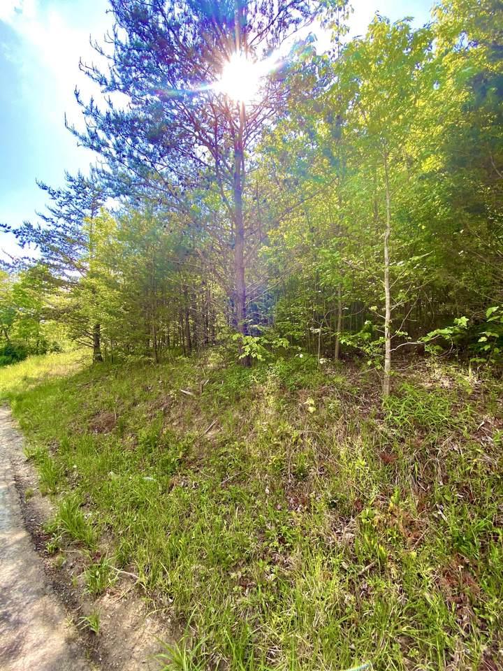 261 Turkey Creek Road - Photo 1