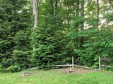 462 Ruffian Trail - Photo 5