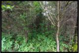 1675 Lillies Ferry Road - Photo 25