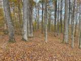 1 Gooseneck Hollow - Photo 17