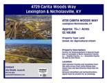 4729 Carita Woods Way - Photo 1