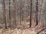 700 Wood View Drive - Photo 5