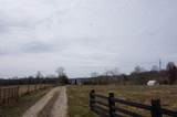 4174 Fall Lick Road - Photo 15