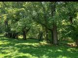 520 Grist Mill Road - Photo 14
