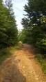 9999 Mills Creek Road - Photo 10