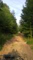 9999 Mills Creek Road - Photo 11