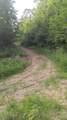 9999 Mills Creek Road - Photo 2
