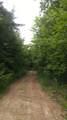 9999 Mills Creek Road - Photo 8