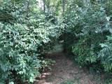 111 Locust Grove Drive - Photo 4