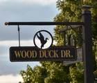 121 Wood Duck Drive - Photo 2