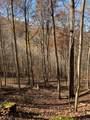 0-0 Cooper Ridge - Photo 4