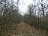 1 Shoemaker Ridge Road - Photo 3