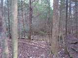 4200 Forest Service Rd - Photo 13