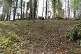 1428 Ivy Hill - Photo 81