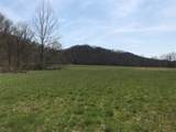 0-Land Brushy Creek Road - Photo 11