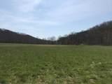 0-Land Brushy Creek Road - Photo 12