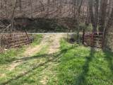 0-Land Brushy Creek Road - Photo 5
