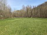 0-Land Brushy Creek Road - Photo 9