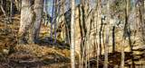 1 Sycamore Fork Road - Photo 23