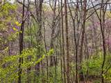 1 Sycamore Fork Road - Photo 88