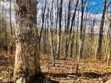 9999 Wildcat Trail - Photo 4