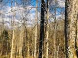 9999 Wildcat Trail - Photo 5