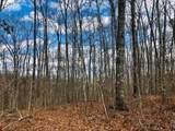 9999 Wildcat Trail - Photo 8