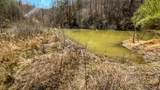 1 Sycamore Fork Road - Photo 20