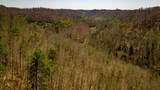 1 Sycamore Fork Road - Photo 69