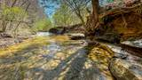 1 Sycamore Fork Road - Photo 80