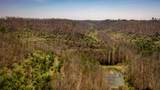 1 Sycamore Fork Road - Photo 99